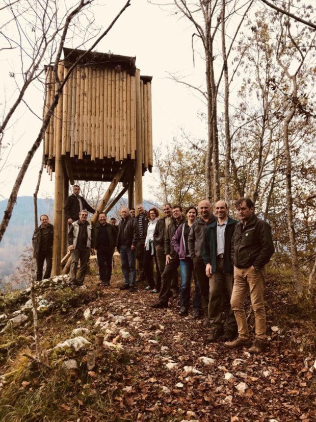 LIFE v gozdovih – izobraževanje gozdarjev kot ključna aktivnost za izvajanje ukrepov za vrste Natura 2000 v gozdovih