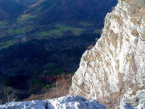 Gozdni rezervat Kuželjska stena