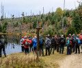 Study field trip to Bavarian Forest National Park