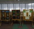 Exhibition of KOČEVSKO – COEXISTANCE WITH NATURE photo competition winners at Kočevje public library