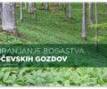 Objava prispevka o projektu LIFE Kočevsko v reviji »Svet ptic«