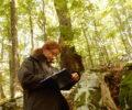 Izbor habitatnih dreves