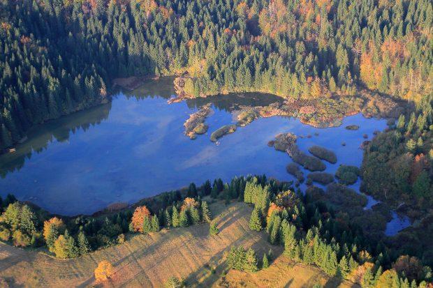 Didaktična učna pot ob Reškem jezeru pri Kočevski Reki