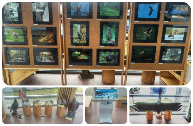 Coexistence with nature photo exhibition