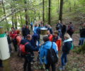 LIFE Kočevsko presented at annual study field trip of Institute for Nature Conservation employees
