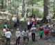 Forest pedagogy education materials for primary school teachers now available