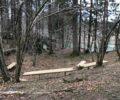 Repair work on Eagle's trail in Kočevska Reka is completed
